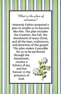 What is the plan of salvation?