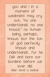 You and I in a moment of weakness may…quote DAVID A. BEDNAR