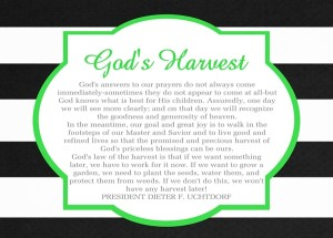 August 2014 HT Handout God's Harvest